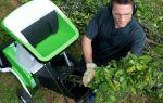 Выбор садового измельчителя для травы, дерева и веток