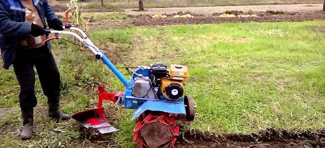 вспашка огородов мотоблоком в сасово